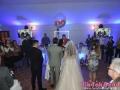 bend_za_svadbe_kikinda_3